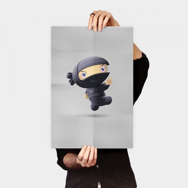 Poster Flying Ninja